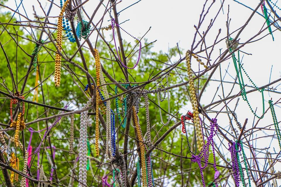 fairhope daphne mardi gras beads in tree