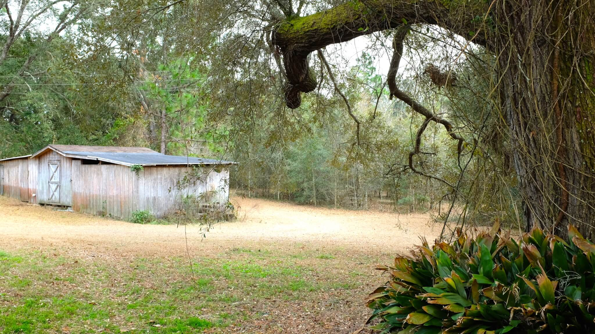 9072 Twin Beech Road Fairhope AL Storage Shed view